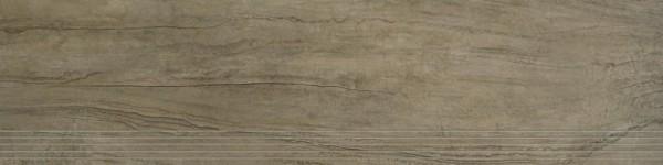 Agrob Buchtal Twin Graubraun Stufe 30x120 R9 Art.-Nr.: 8431-B629HK