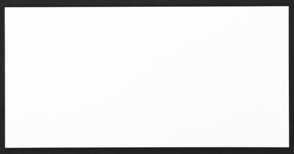 Villeroy & Boch Outline Weiss Wandfliese 25x50 Art.-Nr.: 1560 AE00