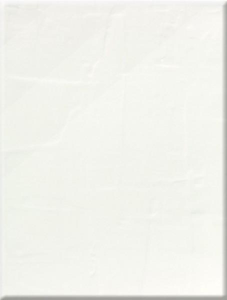 Steuler Bongobongo! Weiss Wandfliese 25x33 Art.-Nr.: 34070